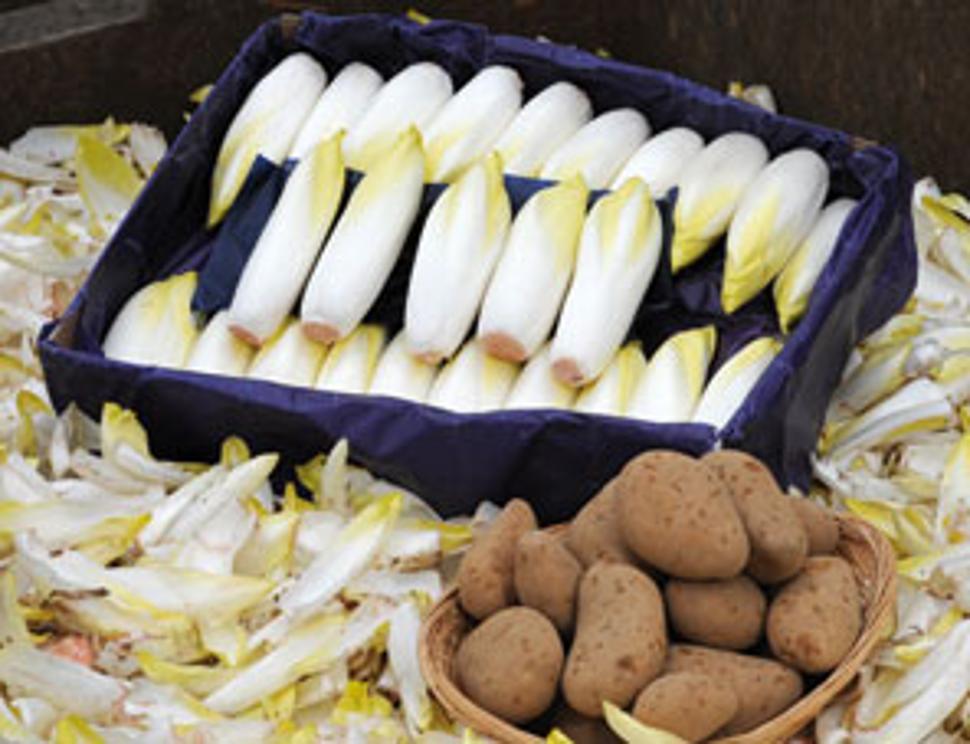 Fermes Coqueron - légumes