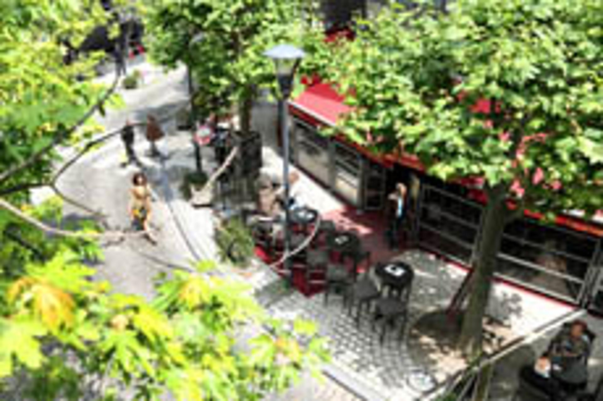 Le Bouquin, côté terrasse