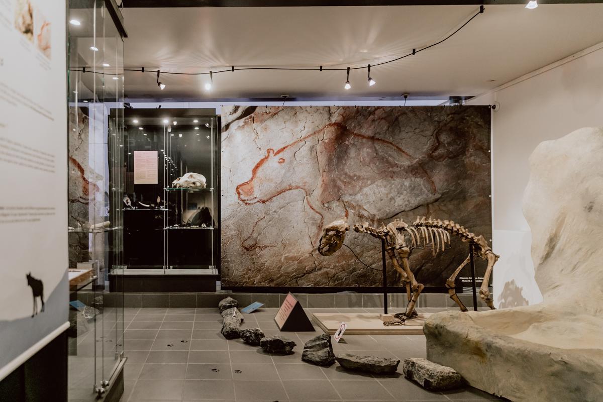 Musée du Malgré-Tout