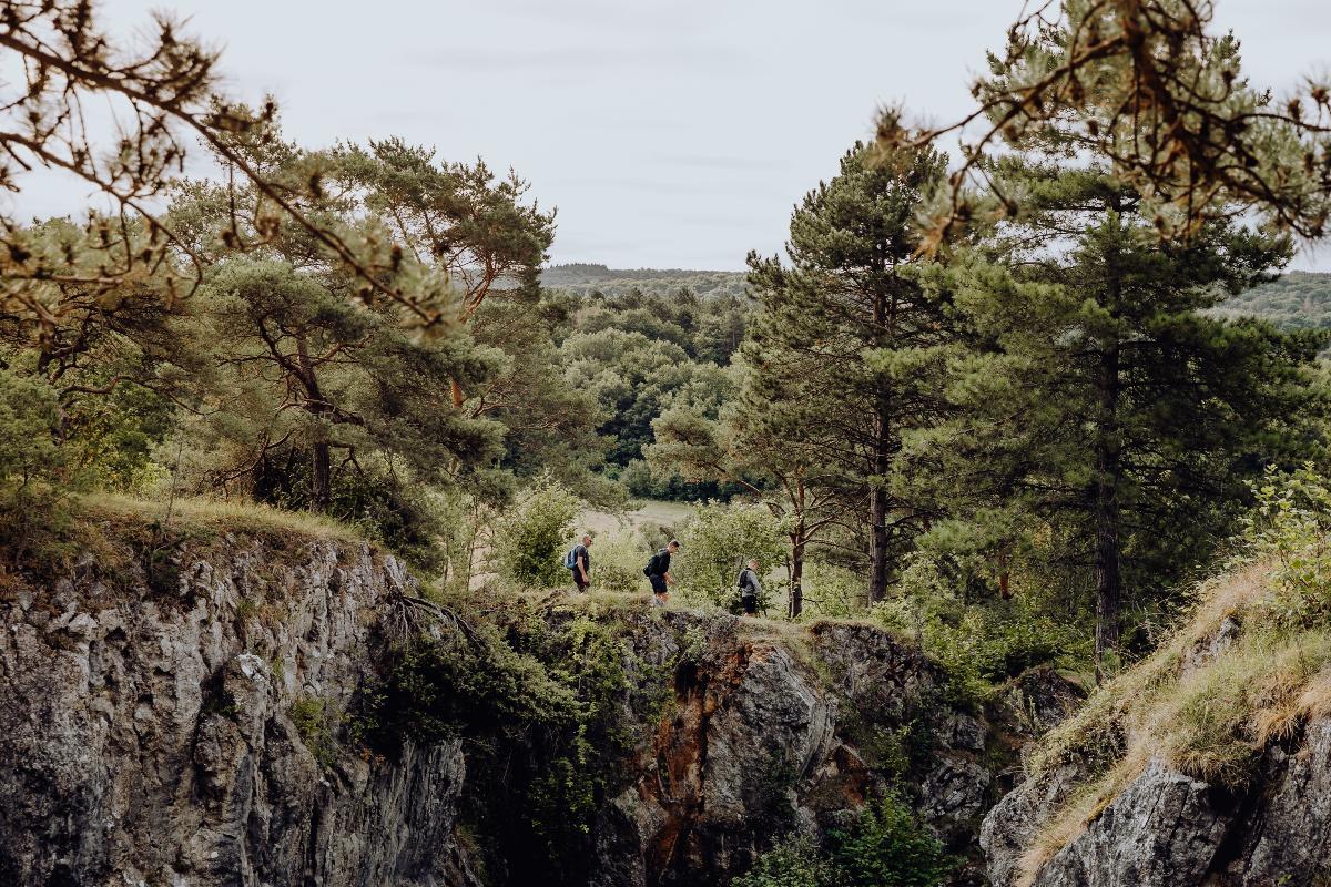 Forêt du Pays de Chimay