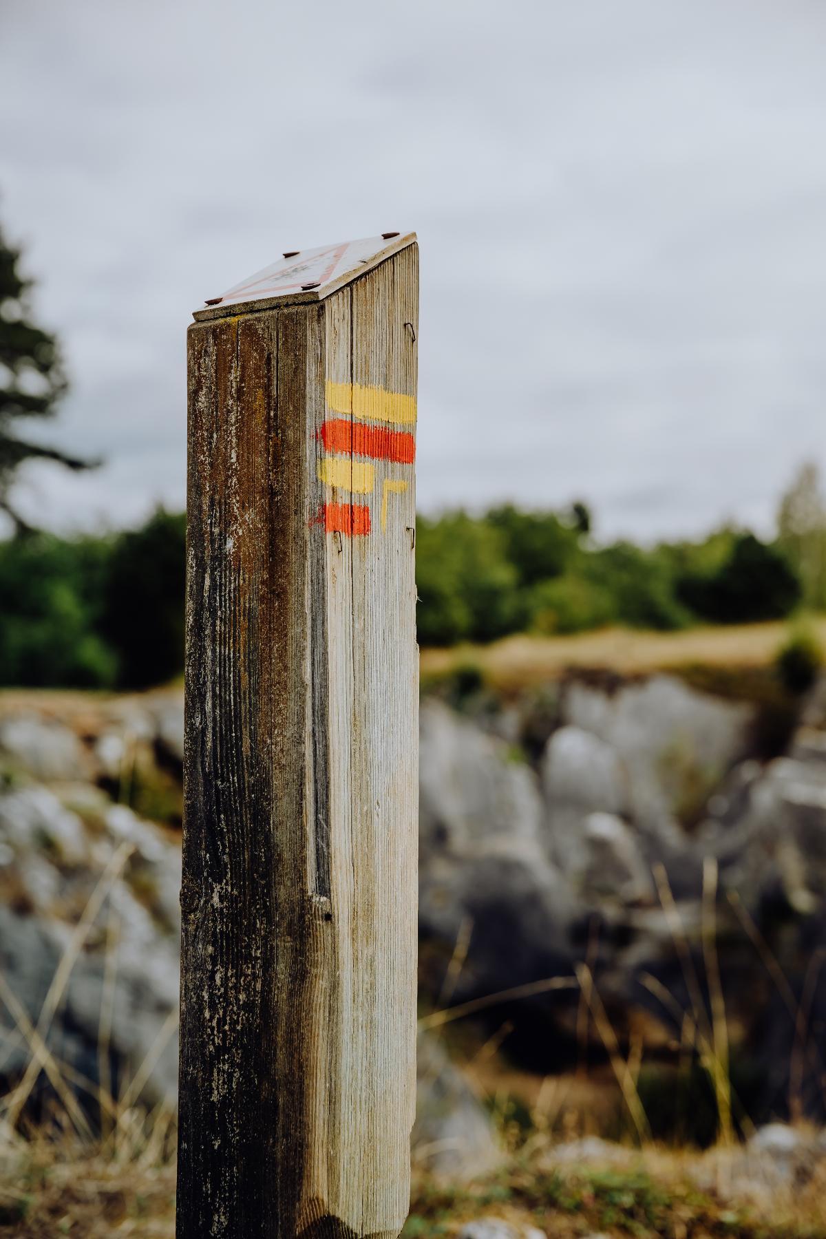 Grande Traversée de la Forêt du Pays de Chimay-Tronçon Macquenoise-Chimay