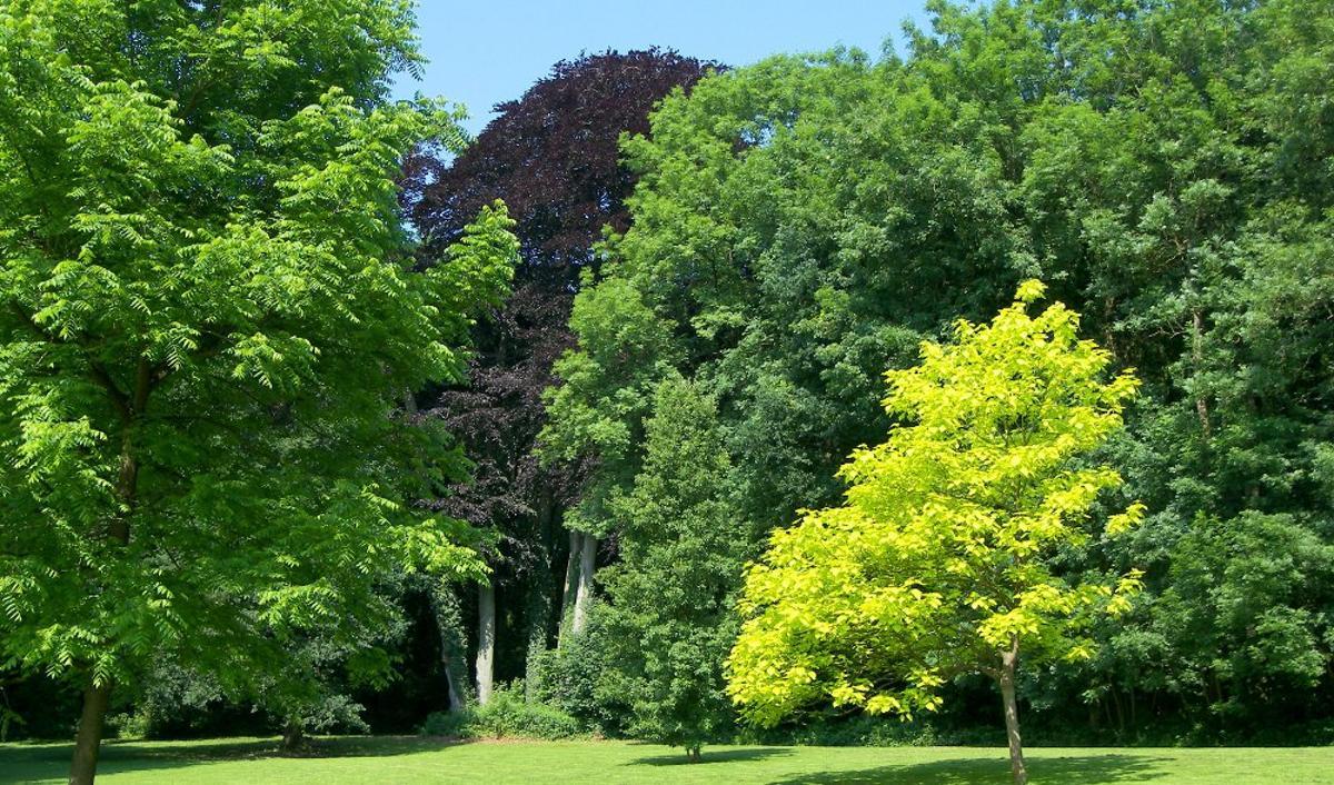 Parc de Monceau-sur-Sambre