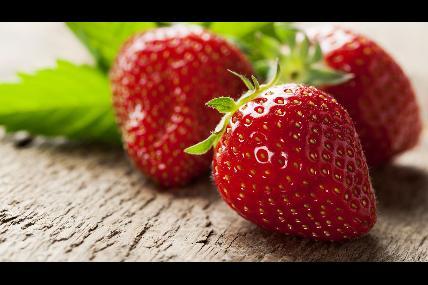 Les fraises du Petit Pâchis