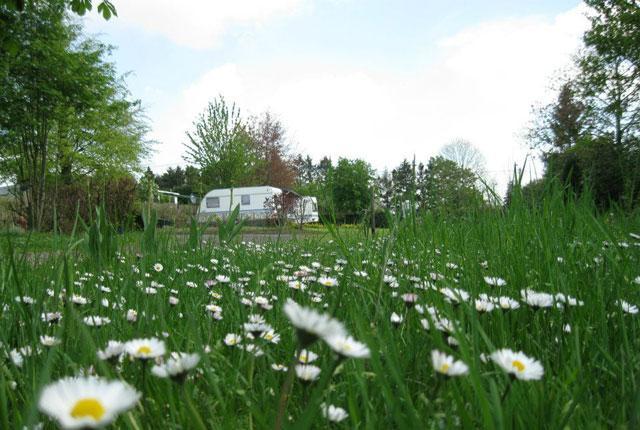 Camping: Le P'tit Cortil