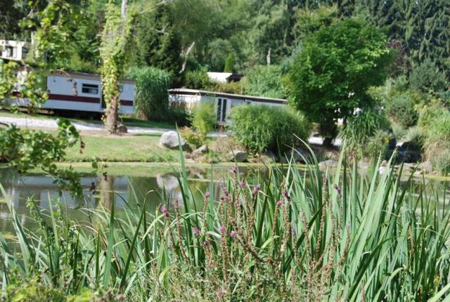 Camping: Le Grand Etang de la Molignée