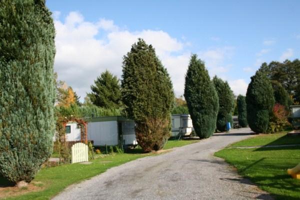 Camping: Les Choquiats