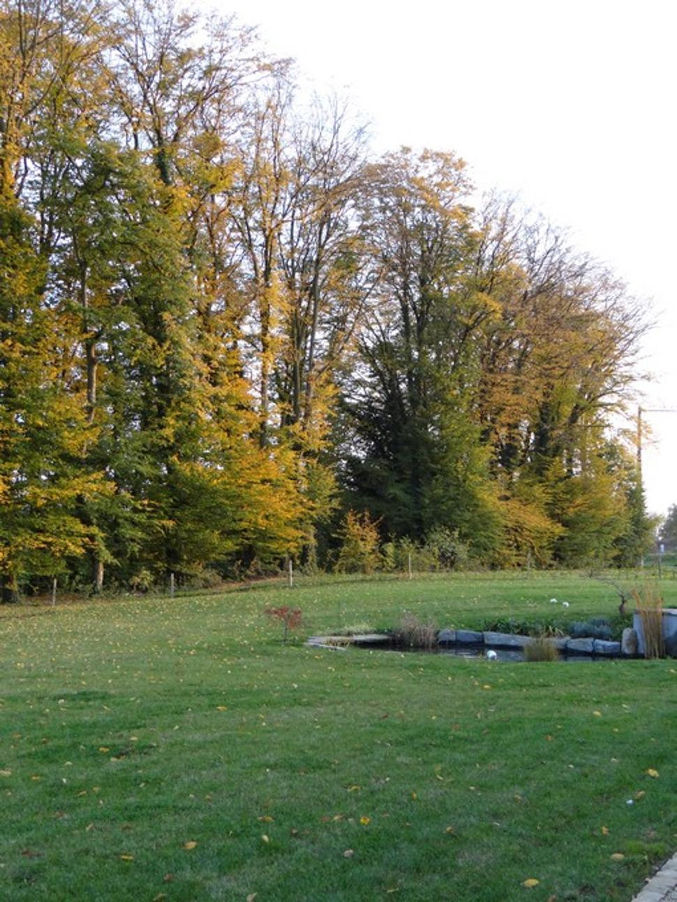 Puits-charmant-schaltin-jardin