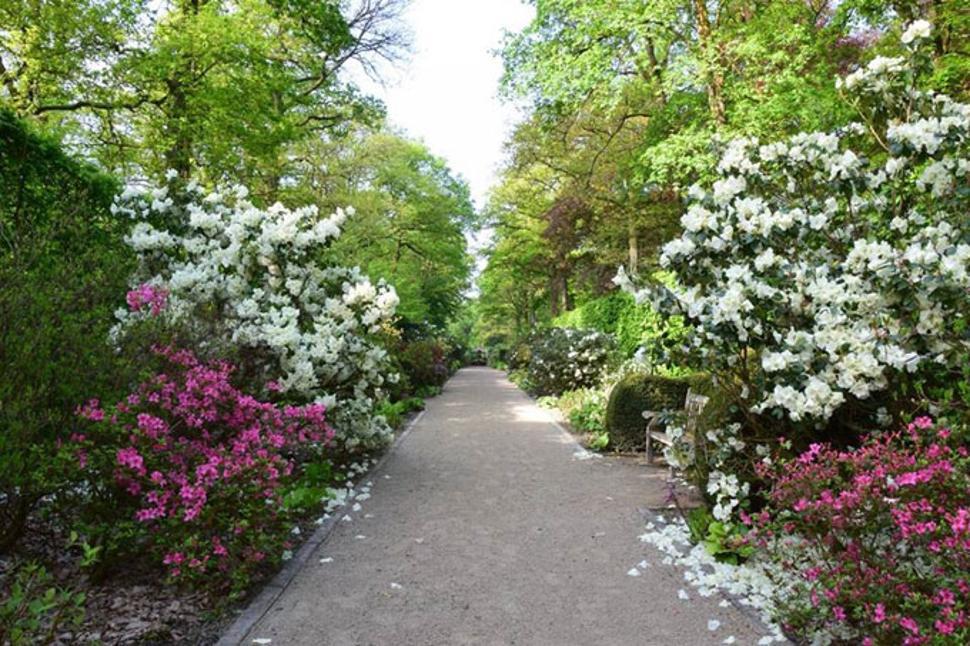 Fous-de-jardins-chevetogne