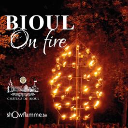 Bioul on fire