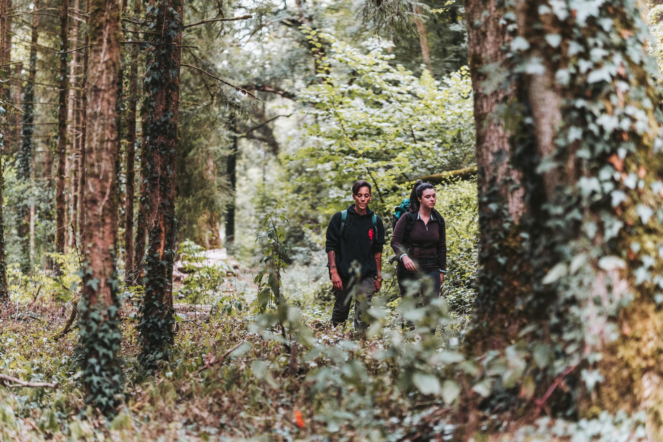Escape Game: A la découverte des secrets de la forêt
