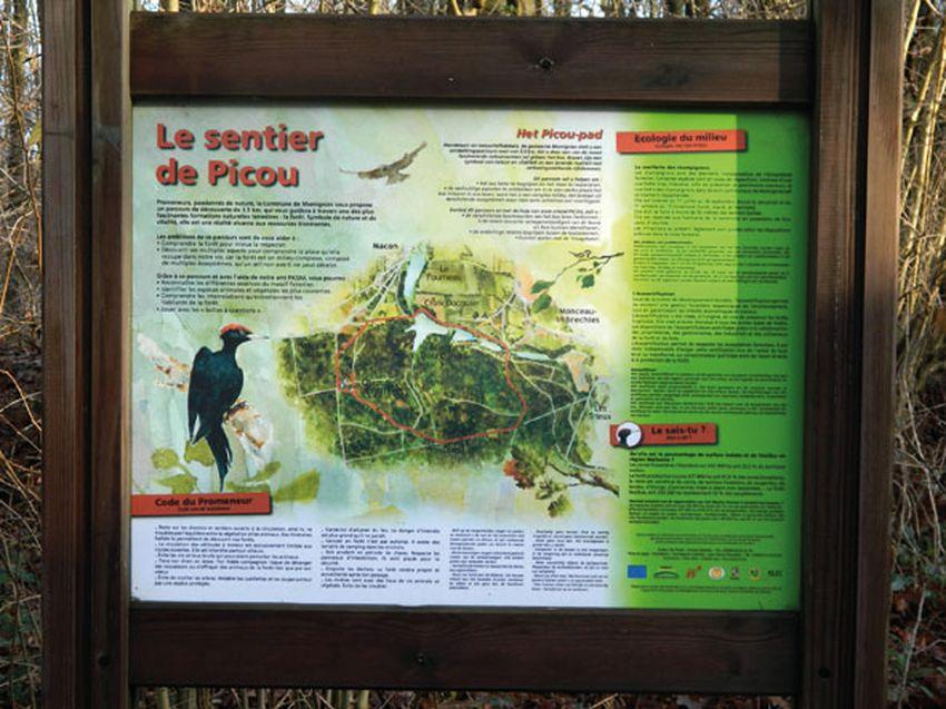 Promenade du Sentier de Picou / N-D des Affligés