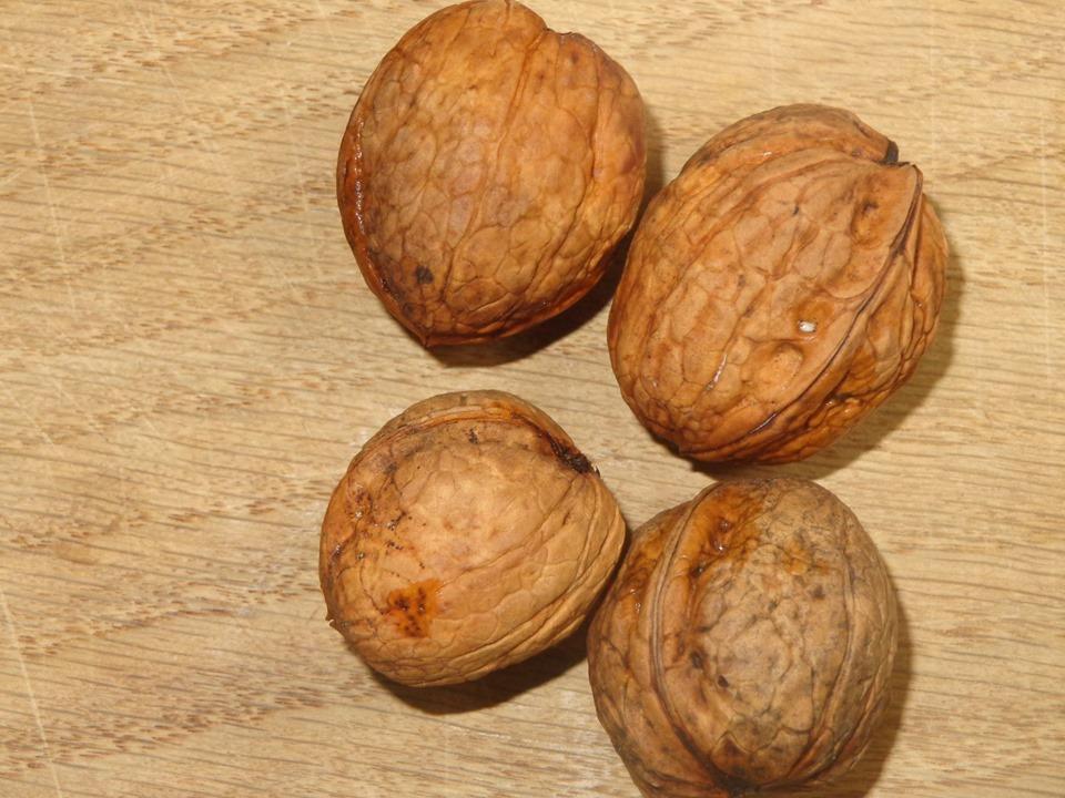 Pressage de noix au moulin du Stwerdu