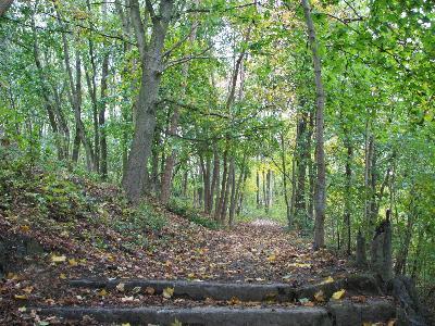 Balade guidée Wallonie Destination nature