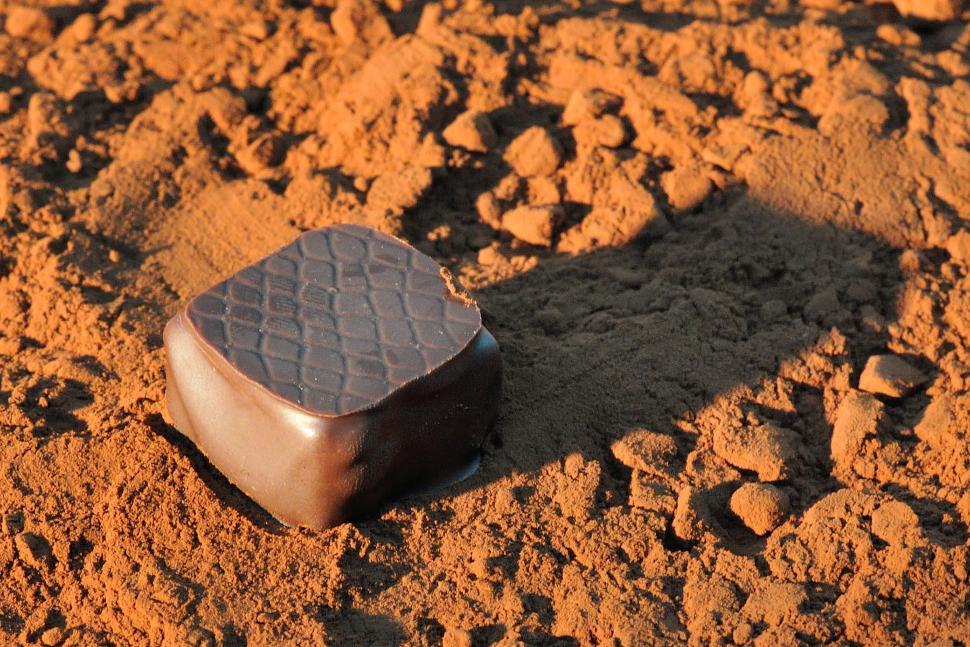 Didier Smeets chocolatier (1)