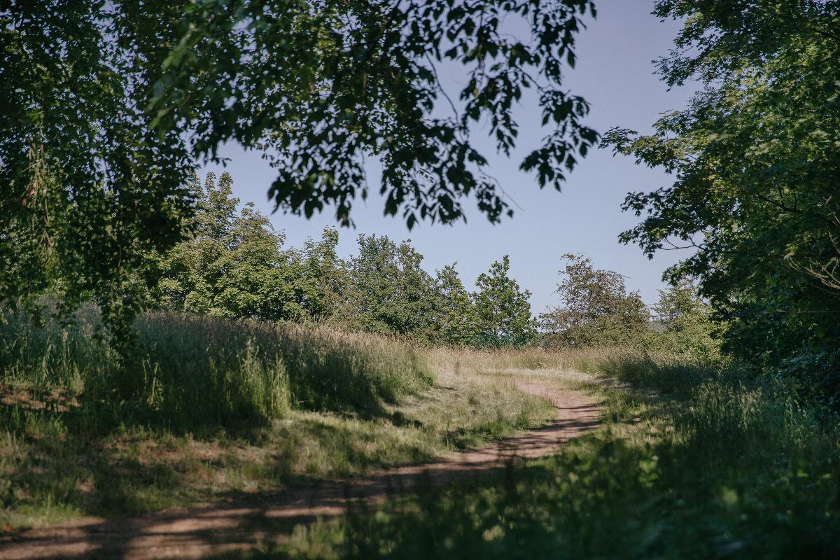 Parc communal de Châtelet