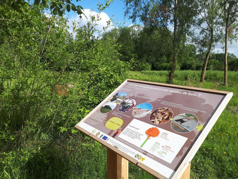 Parcours didactique - bois de Gesves 2