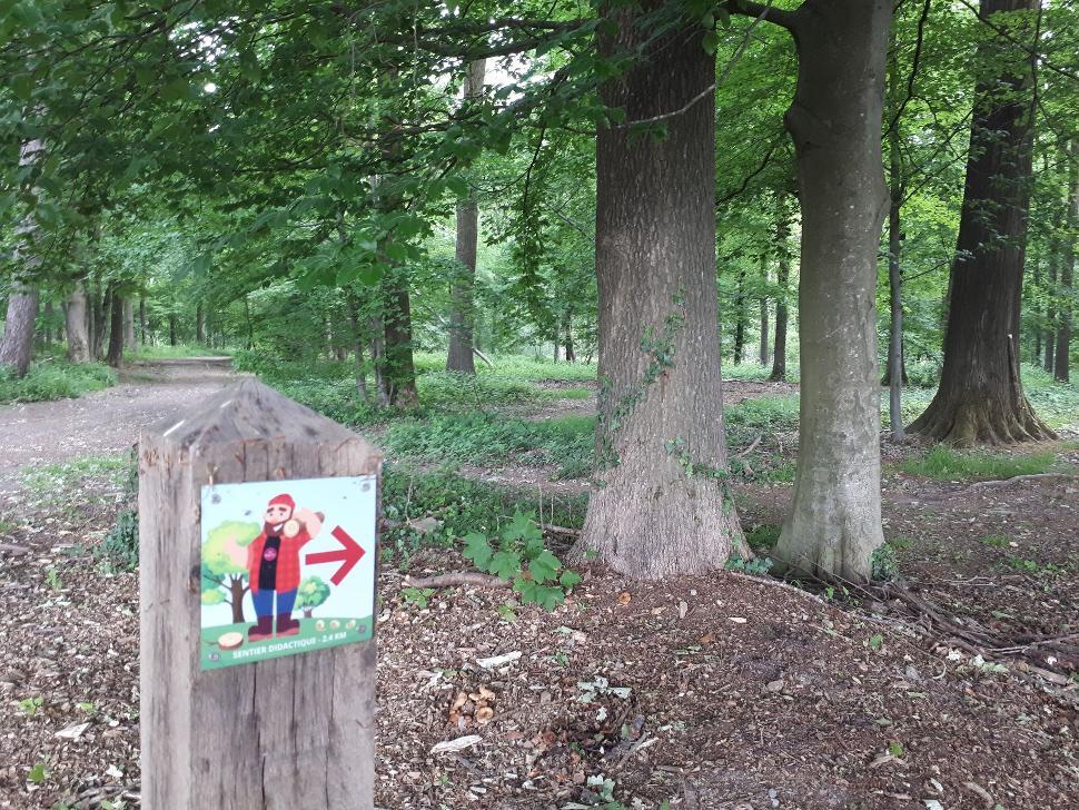 Parcours didactique - bois de Gesves - Balisage
