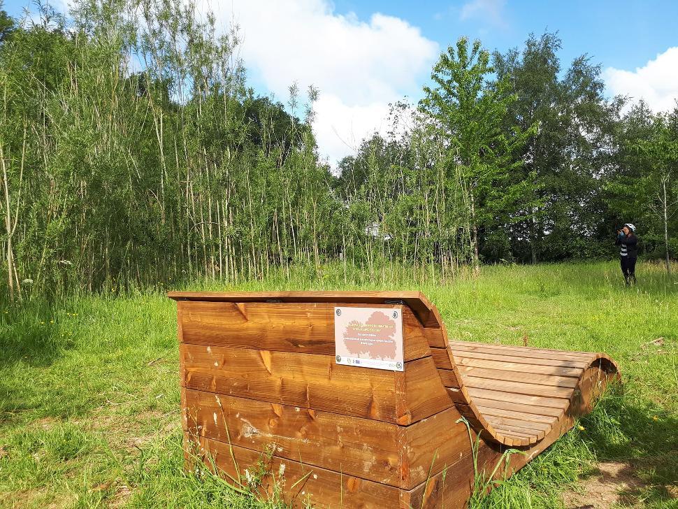 Parcours didactique - bois de Gesves - Banc
