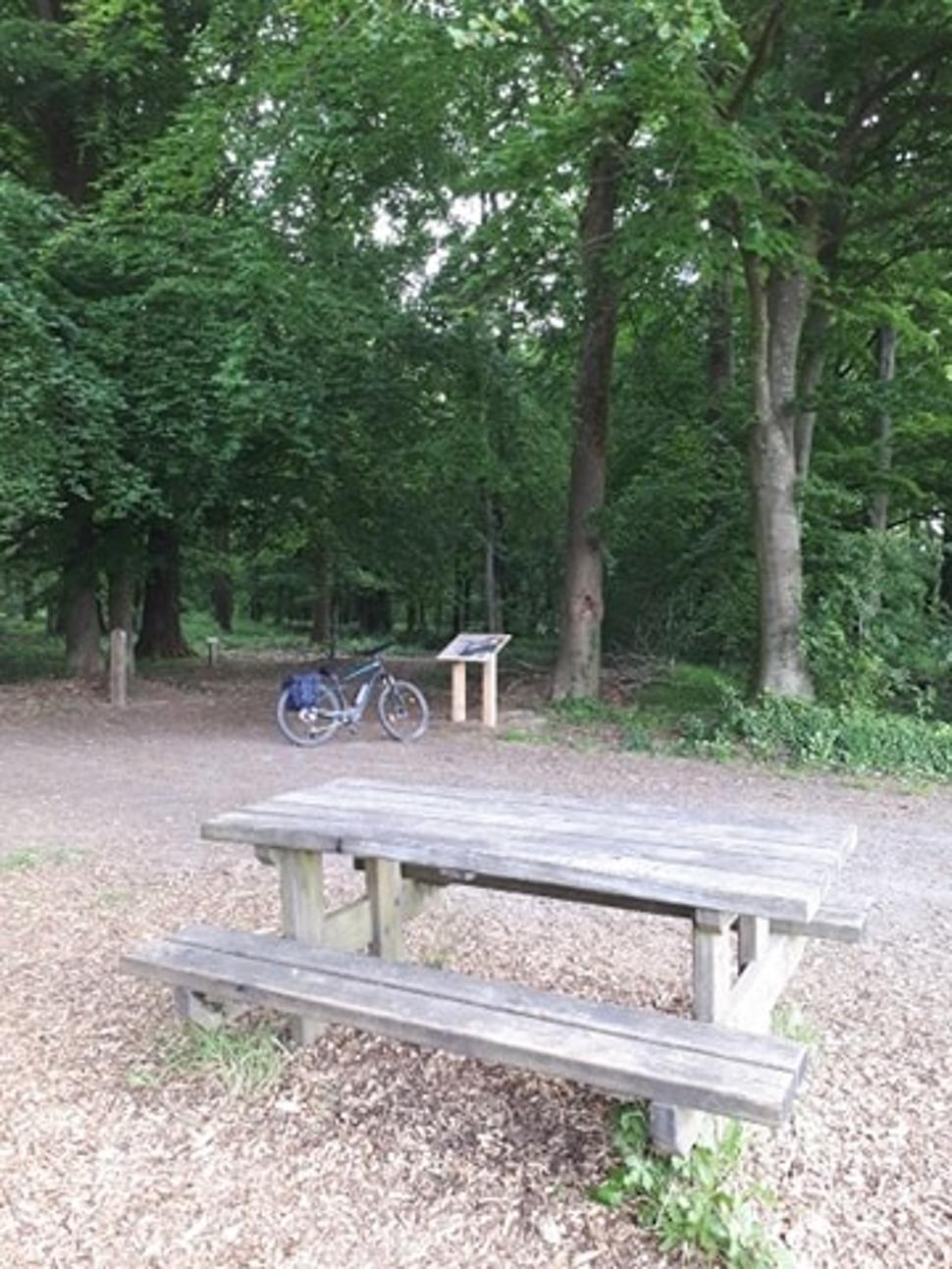 Parcours didactique - bois de Gesves Table Pique-Nique
