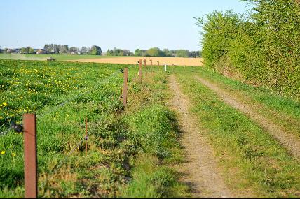 Miécret: Promenade de la Fagne