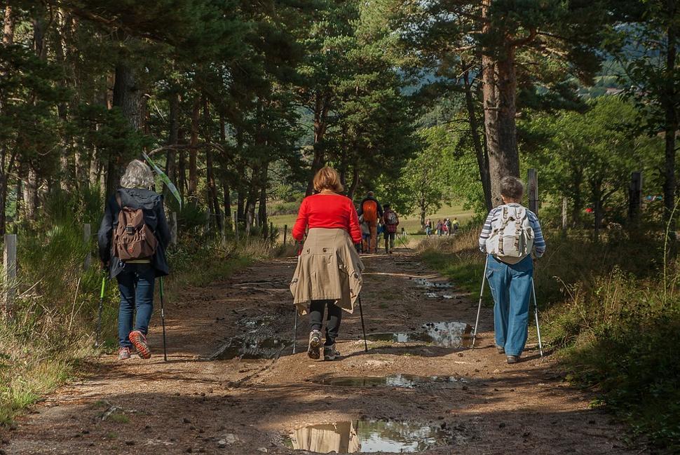 Marcheurs forêt