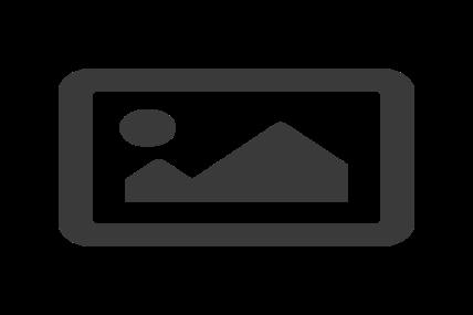 Exposition : Owen Munisamy, l'aventure du biomorphisme - Spy