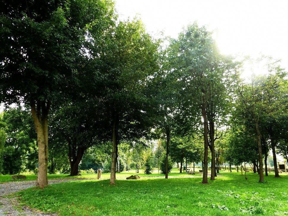 Arboretum de Coingsoux
