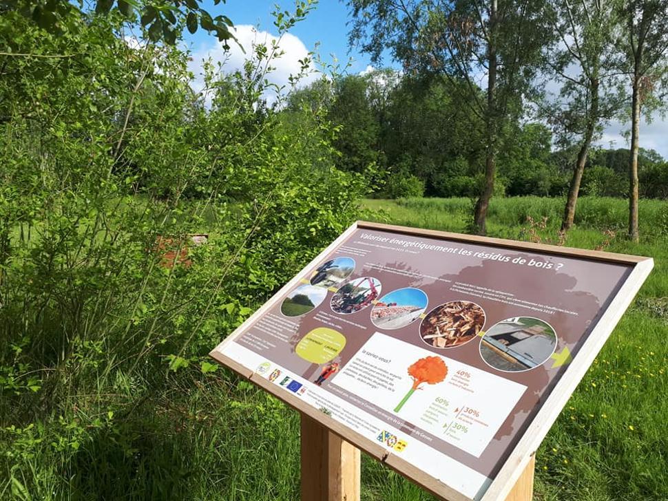 Bois-didactique-Gesves-panneau-arboretum3