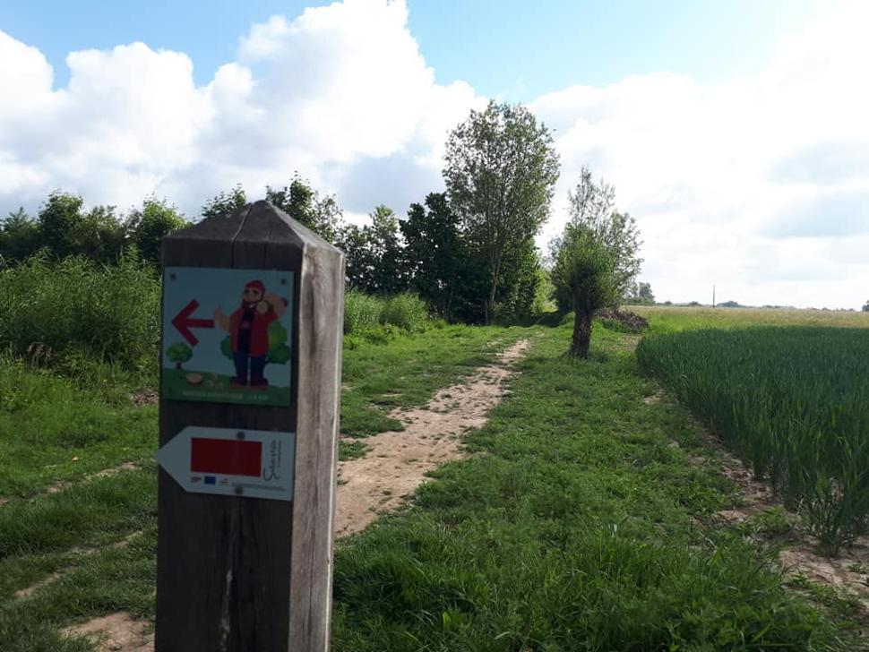 Bois-didactique-Gesves-balisage-bucheron