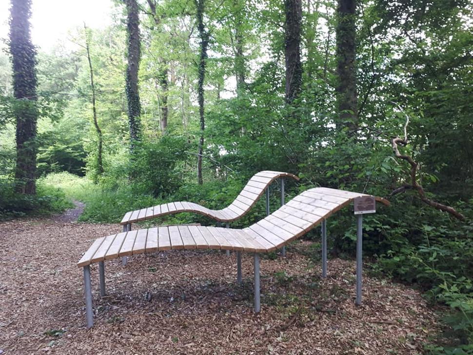 Bois-didactique-Gesves-banc-concours3
