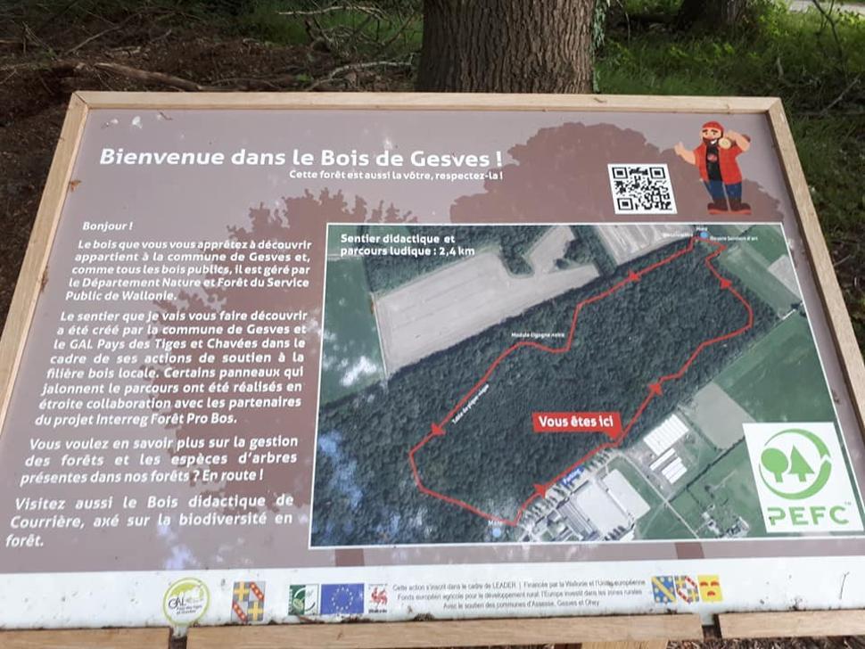 Bois-didactique-Gesves-panneau-didactique-bucheron
