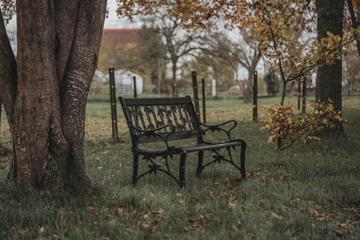 Ferme des Monceaux : La Laiterie