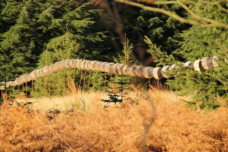 Arboretum_©MTPV (7) - Copie