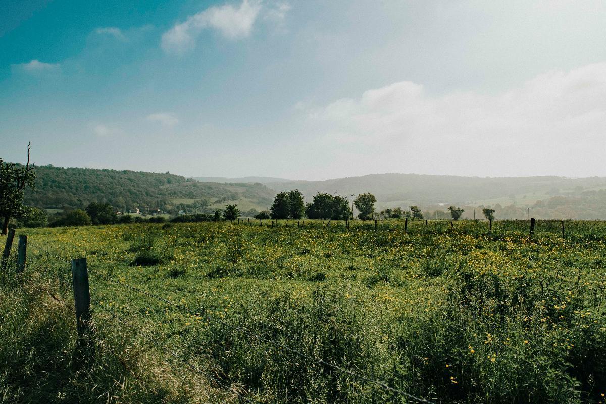 Grande Traversée de la Forêt du Pays de Chimay – Tronçon Hierges - Hastière