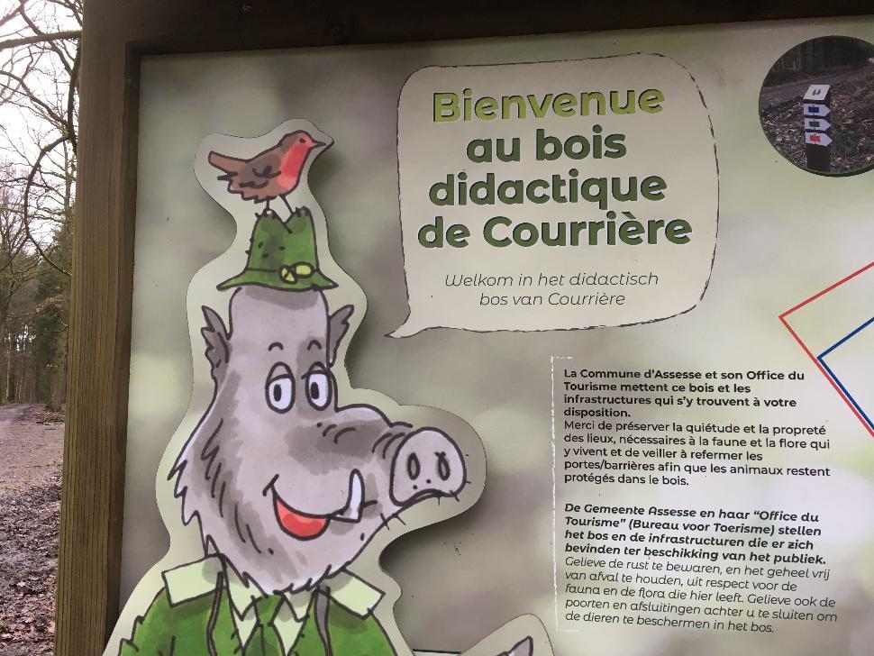 Bois didactique de Courrière (2)-min