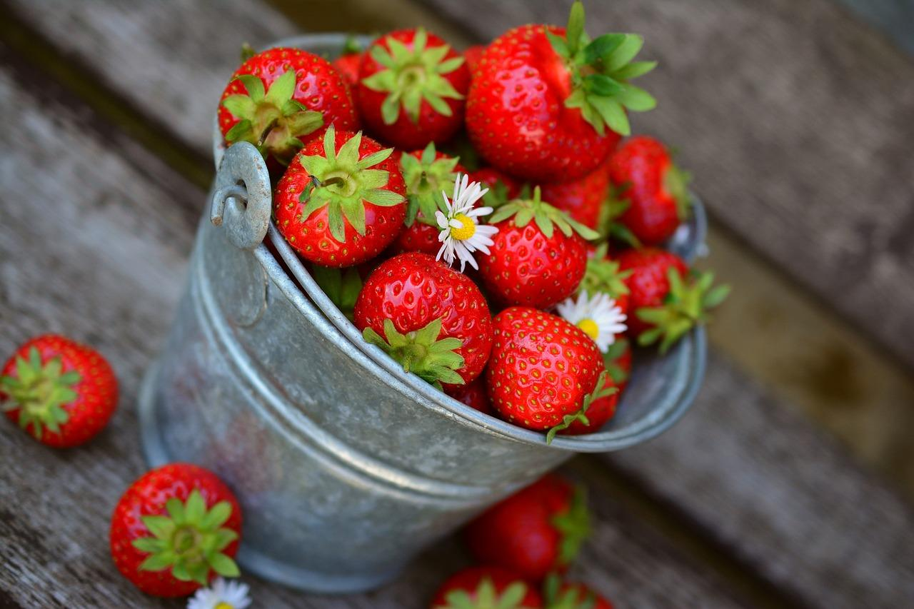 Wépion, capitale de la fraise