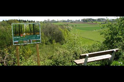 Ossogne: Promenade du Bois d'Ossogne