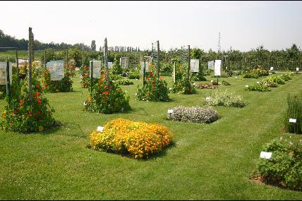 Tuin & serres in het Technische Tuinbouw Centrum