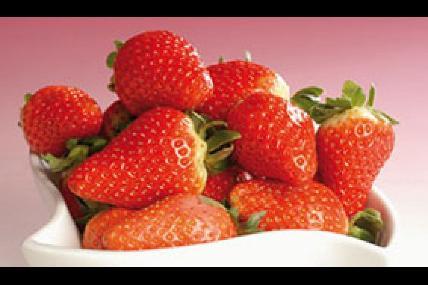 Les fraises de Sambreville - Luc Bertrand