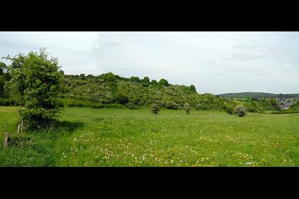 Promenade guidée - Une petite vallée bien orientée, une réserve pleine de beautés et de surprises