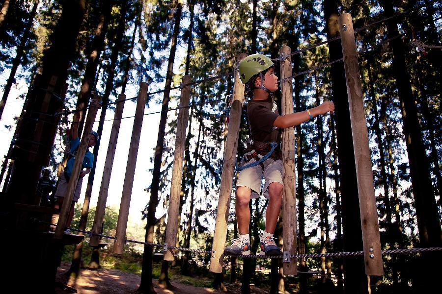 Forestia - Theux - Escalade