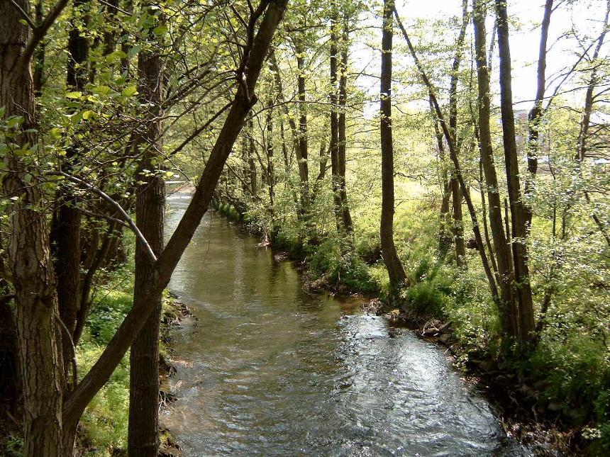 Vallée Gueule 02